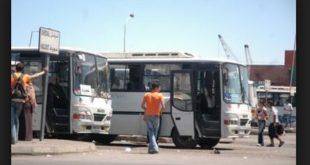 transport-bus-prive-algerie