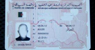 permis-de-conduire-biométrique-algérie